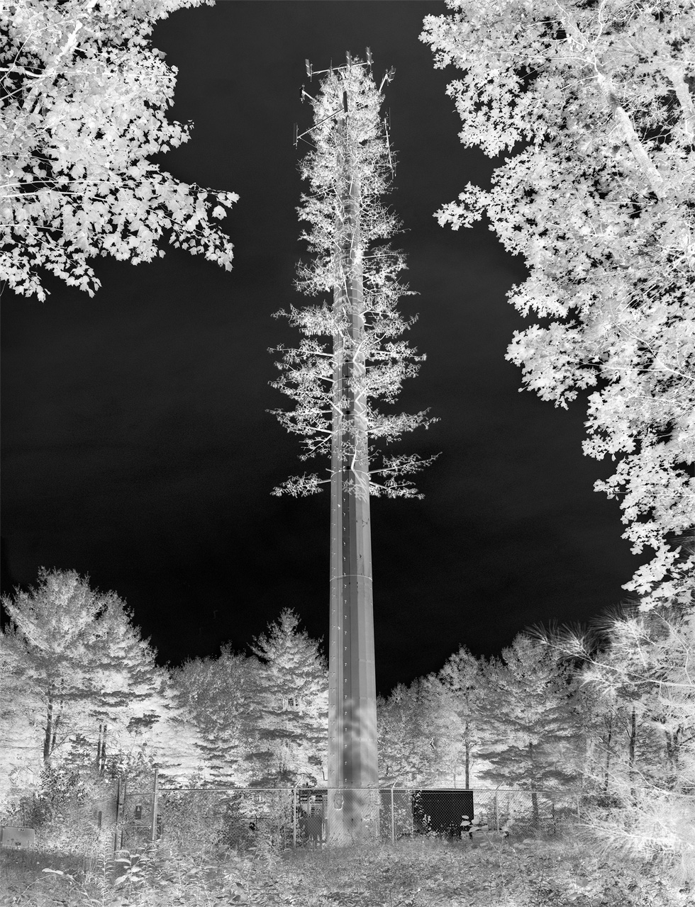 Fake-Tree-Tower-NY-flat-2012.jpg